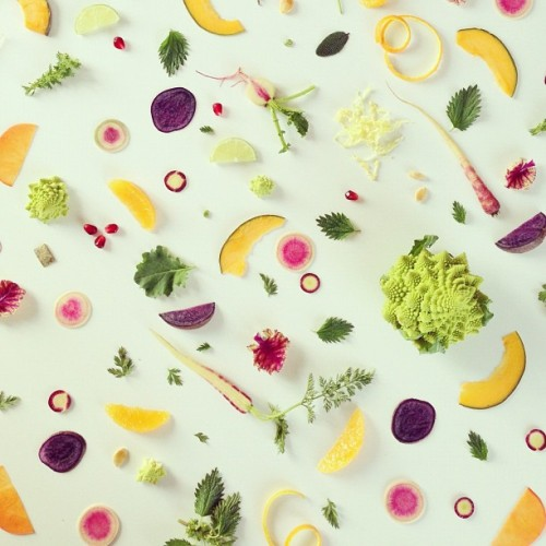 julie-lee-food-collage-08